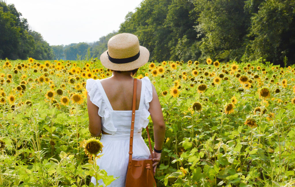 McKee-Beshers Sunflower fields – Maryland Sunflower fields – Madewell white eyelet dress, Sole Society boater hat, Mansur gavriel Mini mini bucket bag | SamCora Blog